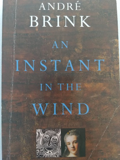 André Brink Instant in the wind